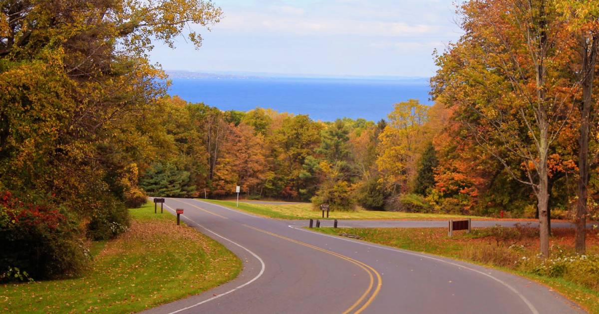 road with fall foliage, lake in background